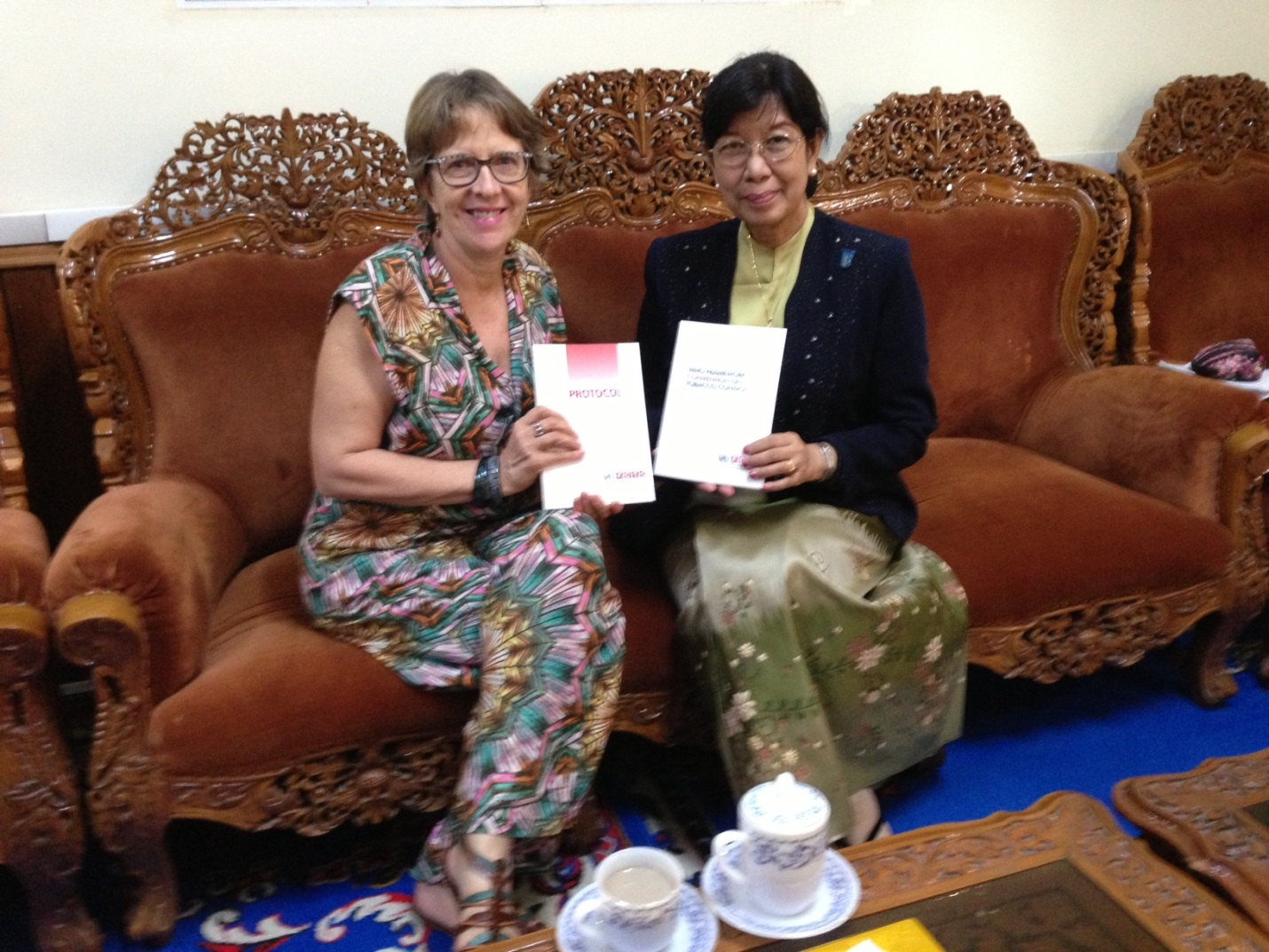 The Head of Convention Secretariat meets Deputy Minister of Health of Myanmar in Nay Pyi Taw on 8 December 2014