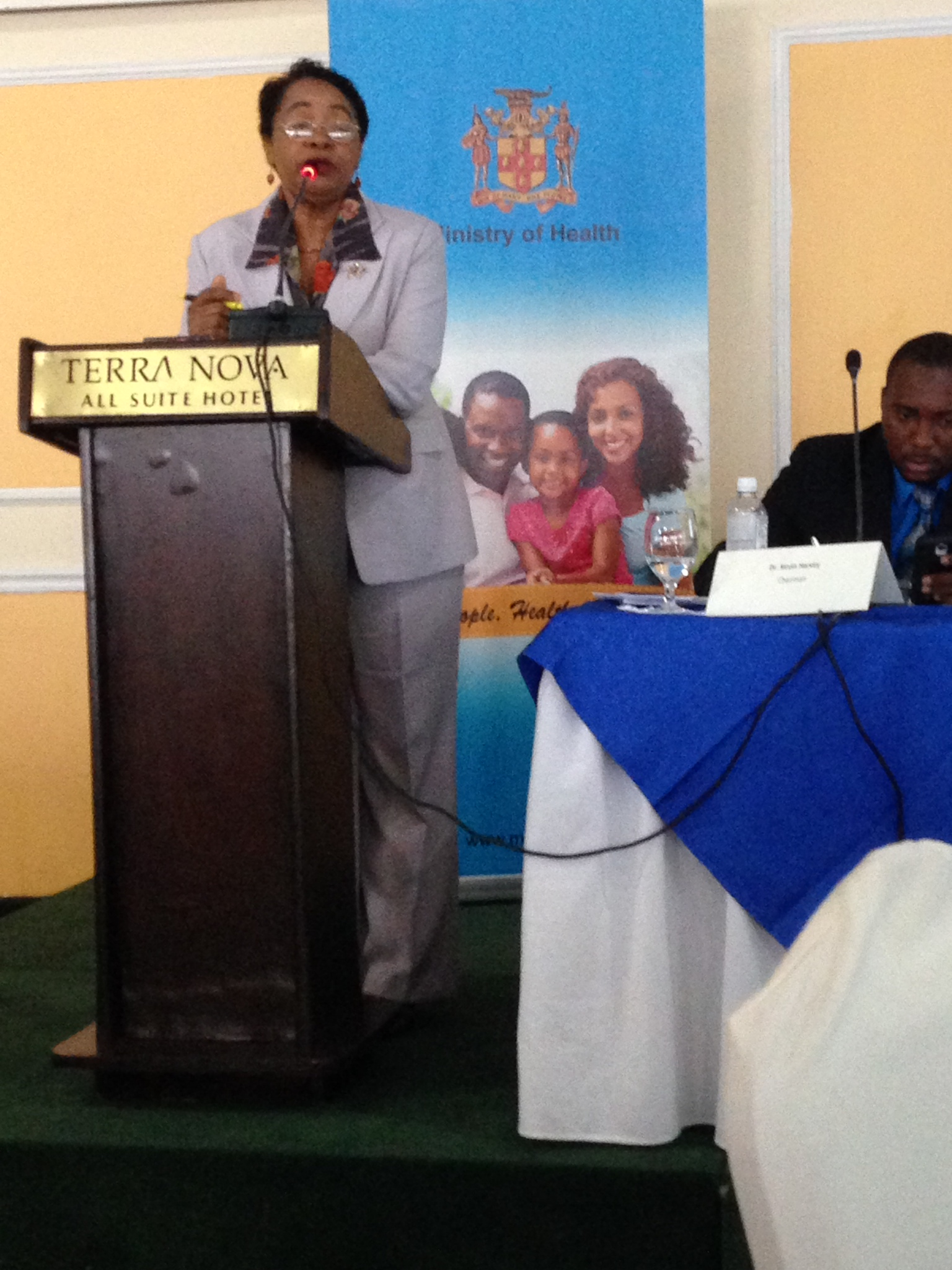 Ms Eva Lewis-Fuller speaking at the stakeholder meeting held during the needs assessment mission in Jamaica (August 2014)